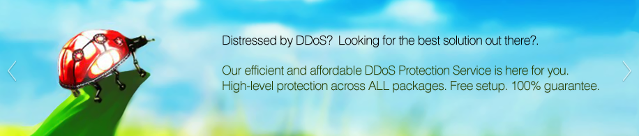 Hard working, cost-efficient DDoS protection
